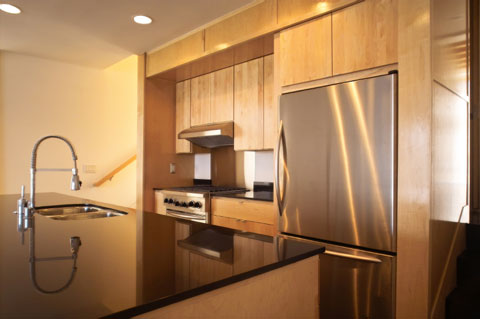 kitchen18_wood_stainless2.jpg