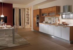 Contemporary Modern Kitchen Cabinets