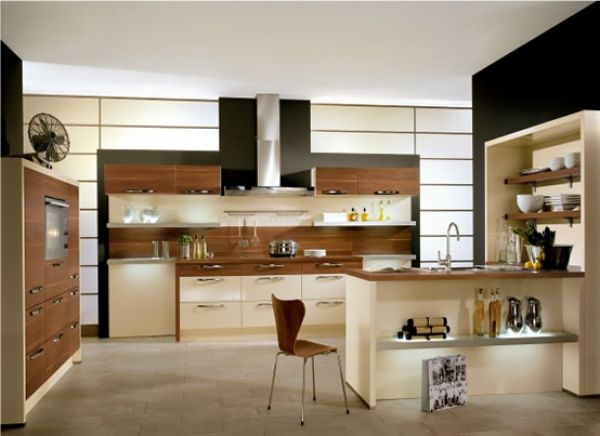American kitchen cabinet for American walnut kitchen cabinets